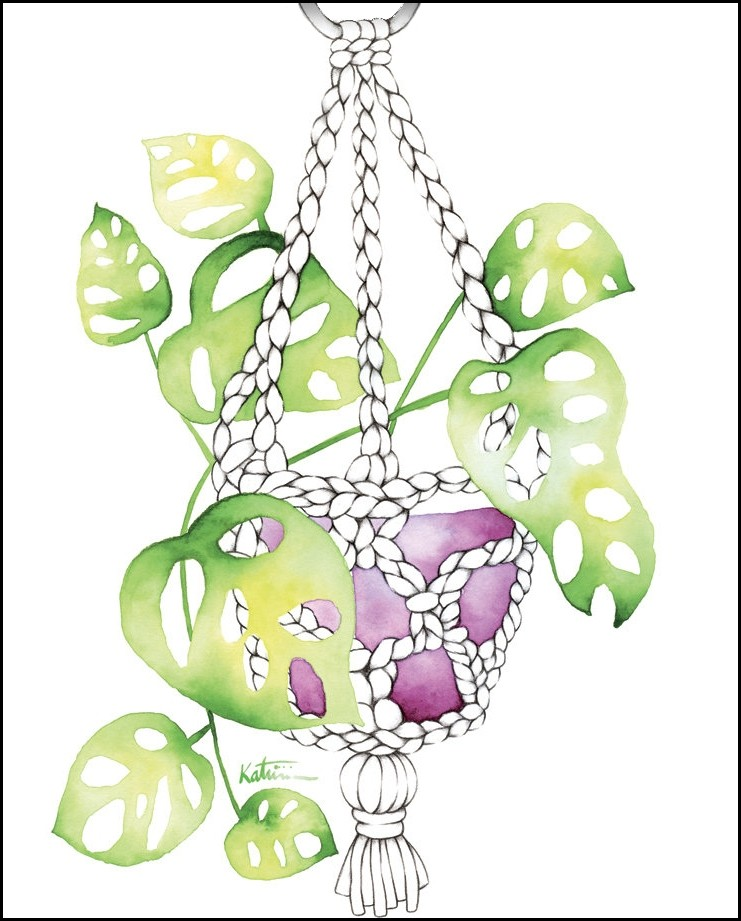 Carte de souhaits 4x5 po, Plante suspendue jardinière, de l'artiste Katrinn Pelletier, dimension : 4.25 x 5.5 pouces largeur, sans texte, avec enveloppe  Vous pouvez inscrire votre message à l'intérieur.  Carte vendue à l'unité
