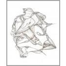 A016, de l'artiste Dorothée Couture, Dessin : Encre sur papier, Création unique, dimension 11 x 14 pouces de largeur