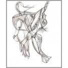 A015, (d.encadré), de l'artiste Dorothée Couture, Dessin : Encre sur papier, Création unique, dimension 14 x 11 pouces de largeur