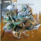 Éclore de nouveau, de l'artiste Sandy Cunningham, Tableau, Techniques mixtes sur toile, Création unique, dimension : 30 x 30 po de largeur