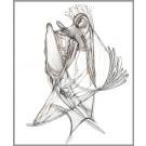 A014, de l'artiste Dorothée Couture, Dessin : Encre sur papier, Création unique, dimension 14 x 11 pouces de largeur
