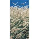 La chasse aux trésors (t.encadré), de l'artiste Elyse Turbide, Acrylique sur toile, Dimension : 48 po x 24 po de largeur