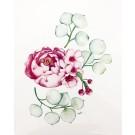 Affiche, Fleur pivoine Eucalyptus, de l'artiste Katrinn Pelletier, dimension : 10 x 8 po de largeur