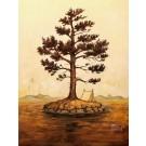 Gros pin, de l'artiste Félix Girard, sur papier Hahnemühle Fine Art Photo Rag avec de l'encre à pigment, dimension : 18 x 14 pouces de largeur, affiche prête à être encadrée