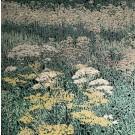 Jardins sauvages XXXIV (t.encadré), de l'artiste Elyse Turbide, Acrylique sur toile, Dimension : 40 po x 40 po de largeur