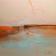 L'art de vivre, de l'artiste Sophie Ouellet, Tableau, acrylique sur toile cartonnée, Création unique, dimension : 12 x 12 po de largeur